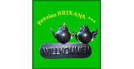 Logo Brixana - Pension