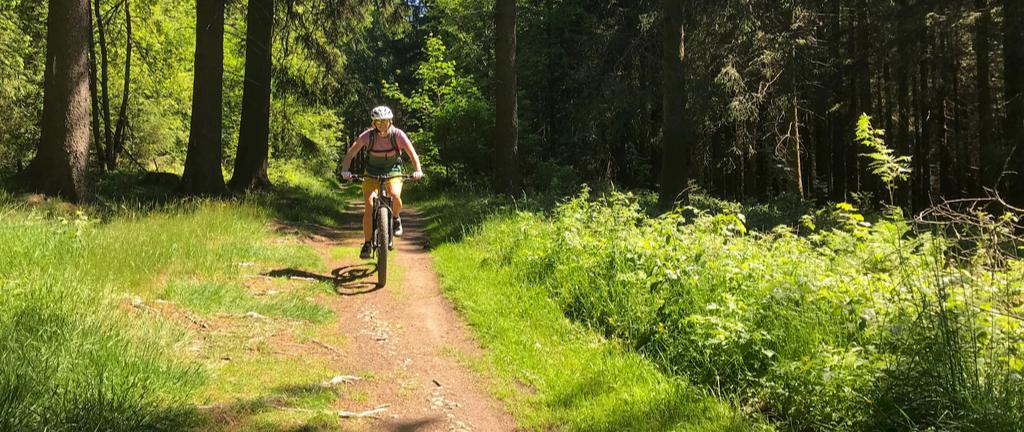 Mountainbiken Winterberg: Die schönsten Routen