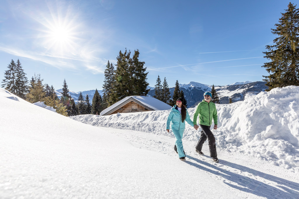 winterlandschap Ski Juwel