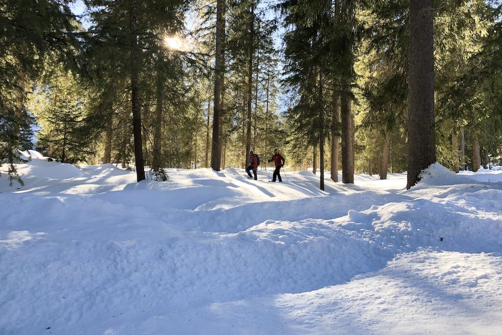 Schneeschuhwanderung Achensee