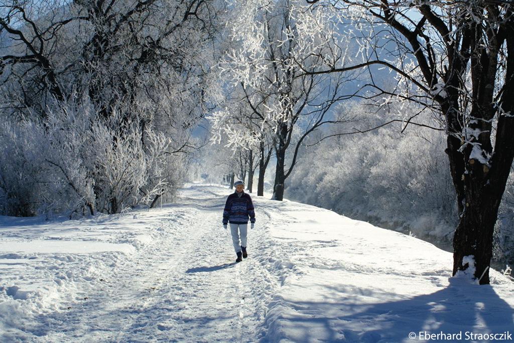 Winterwandelen Naturpark Ammergauer Alpen