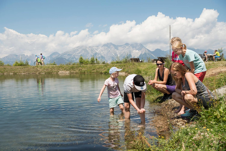 Wandeling Tirol Moosle's Forscherpfad in Lermoos
