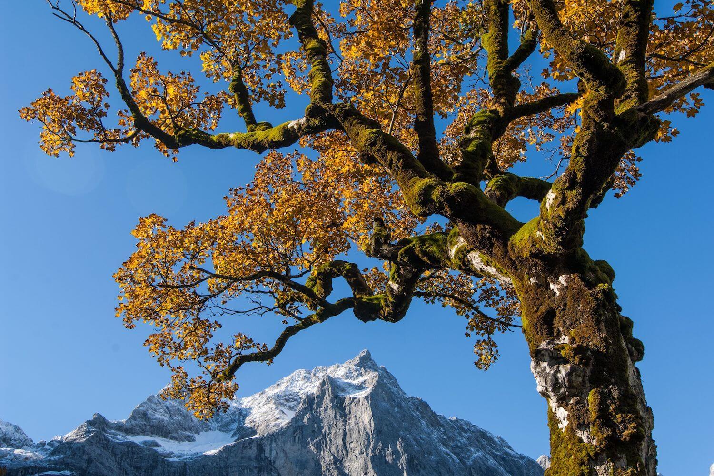 wandelen Tirol Großer Ahornboden