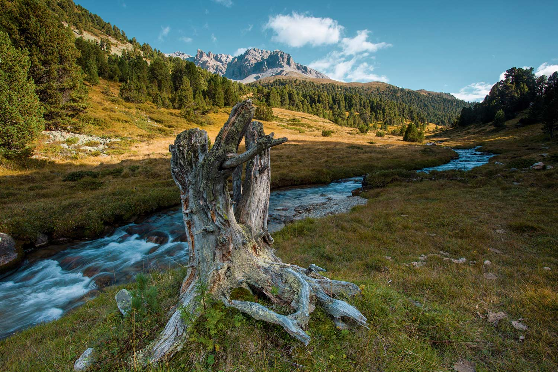 Natuur herfst Zwitserland