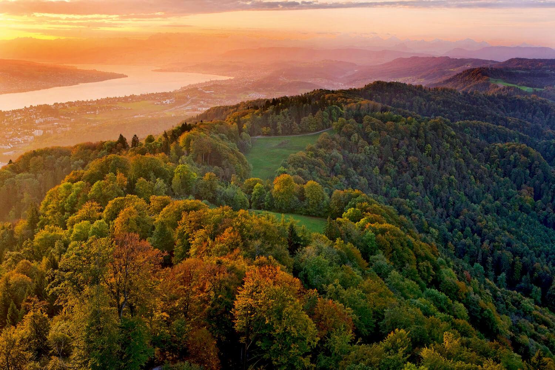 Wildernispark Zürich Sihlwald natuurpark