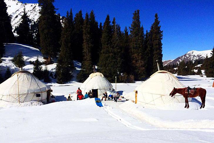 Overnachten in een yurt kamp
