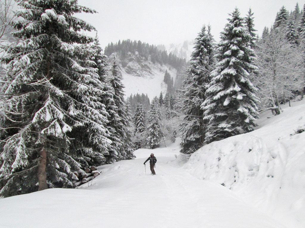 Off-piste door de verse sneeuw in Les Portes du Soleil