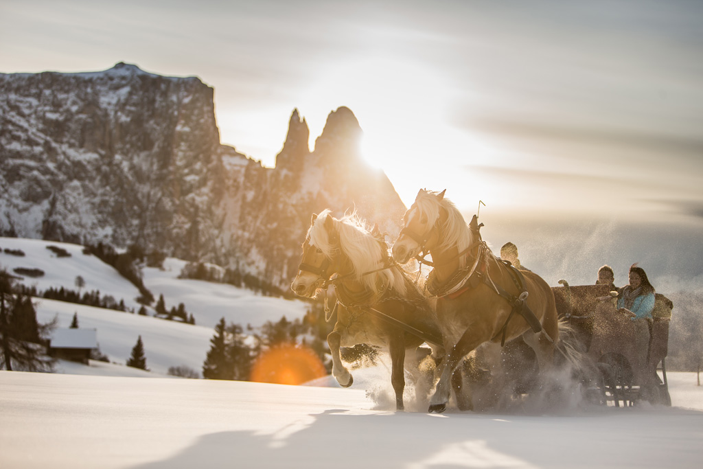 Paardenslee op de Seiser Alm met de zon