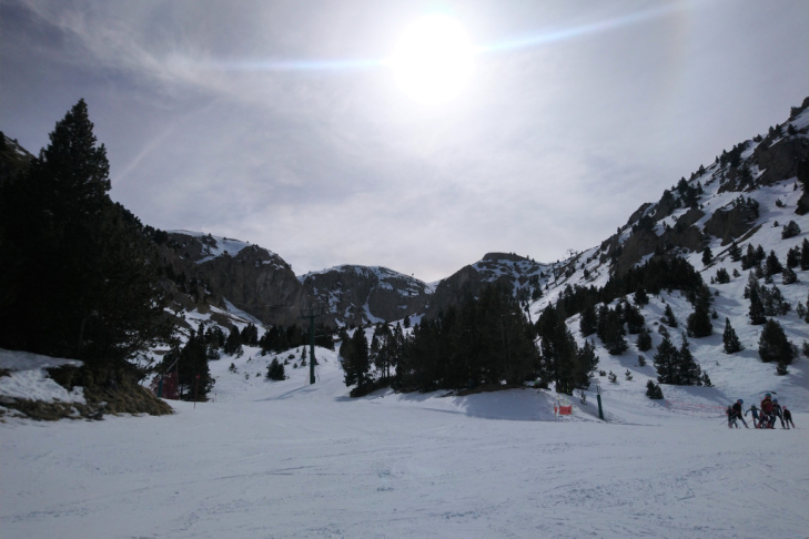Pistes with trees at Masella