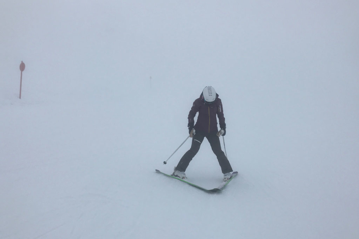 Skier doing a snowplough in bad weather