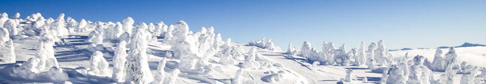 Ski map Big White (Canada)