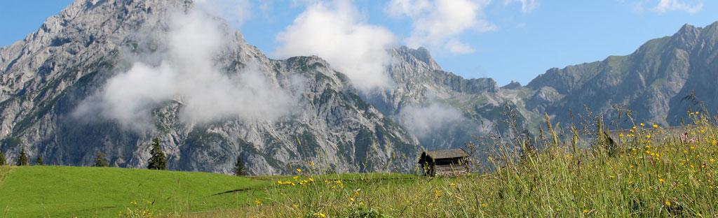 Uitzicht op de bergen in de Alpen