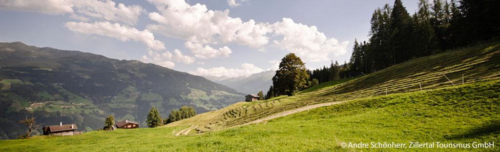Alm in het Zillertal boven Fügen