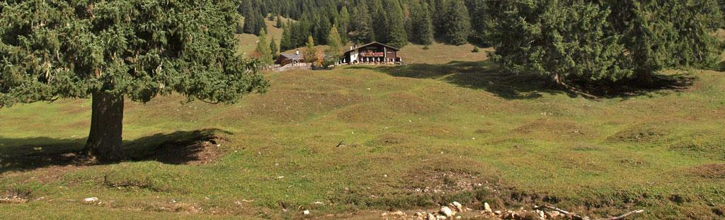 Berghut midden op een alm met grote weides om te spelen