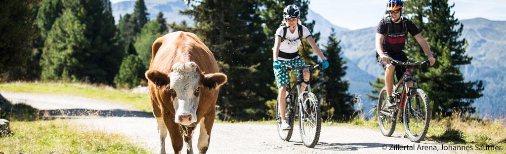 mountainbike zillertal