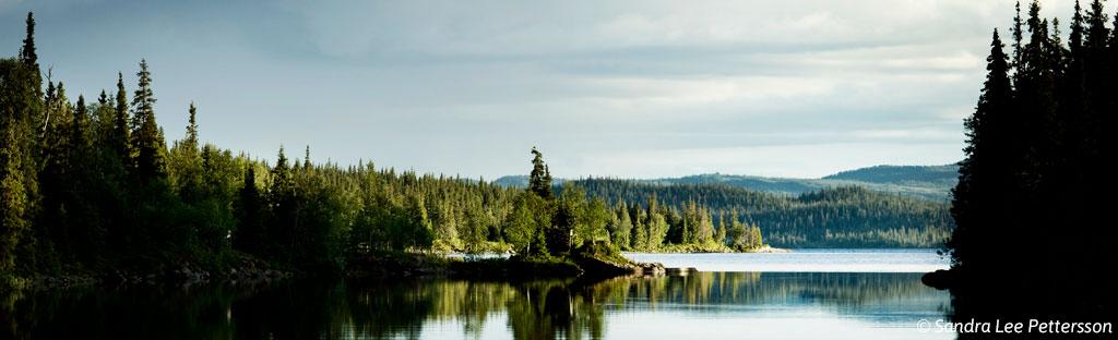 Natuur in Jämtland Härjedalen in Zweden
