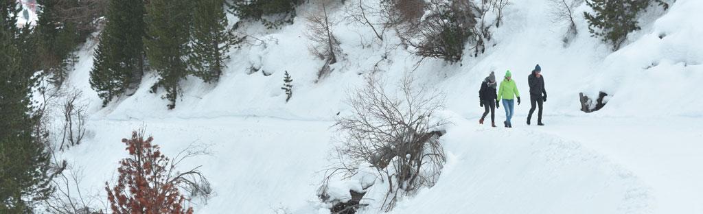 5 bestemmingen waar je kunt winterwandelen