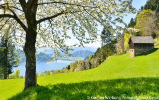 Ossiacher See: ruime keus aan campings