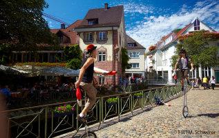De leukste activiteiten in en rond Freiburg
