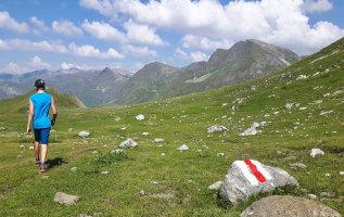 Wegmarkeringen langs wandelpaden: alles wat je wilt weten