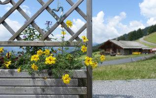 9 tekenen van voorjaar in de bergen