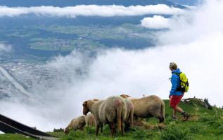 Innsbruck: ideale mix van stad en bergen
