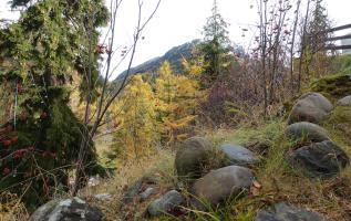 9 reden om in de herfst naar de Alpen te gaan