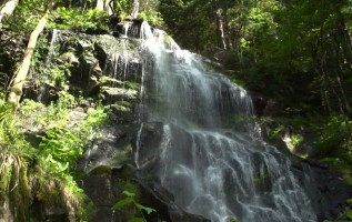 De mooiste watervallen van het Zwarte Woud