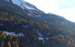 10 boerenwijsheden die een winter met veel sneeuw voorspellen