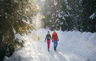 Winterwandelen wint aan populariteit
