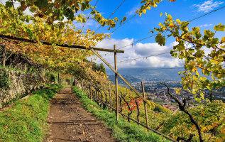 5 mooiste waalwegen van Zuid-Tirol