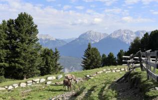 Mijn persoonlijke ervaring met de Innsbruck Trek