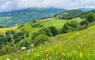 Wandelen in de Vogezen: 6 mooie routes