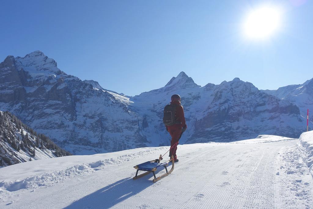 Rodelen Grindelwald