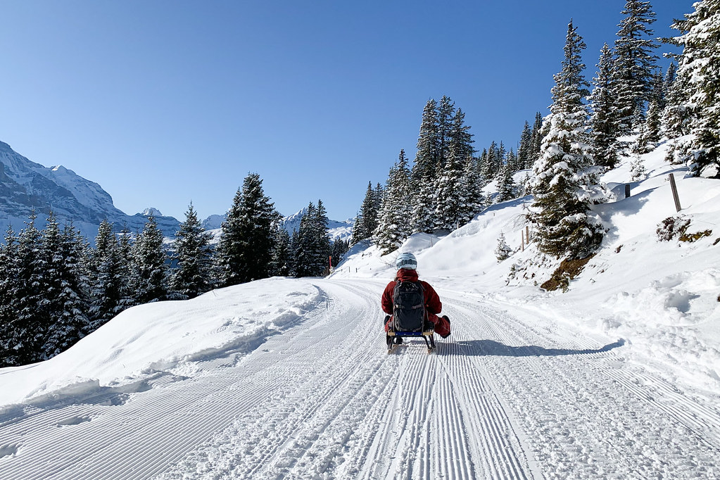 Rodelen wintersport