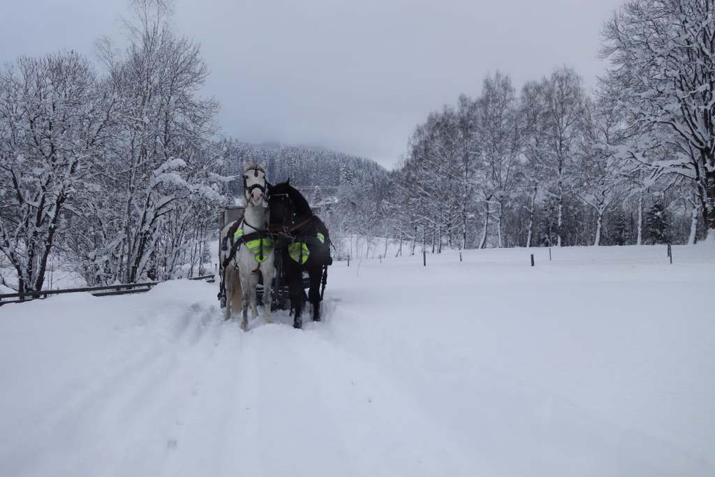 Horse-drawn carriage ride in Kitzbühel