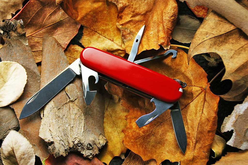 Zwitsers zakmes op bladeren
