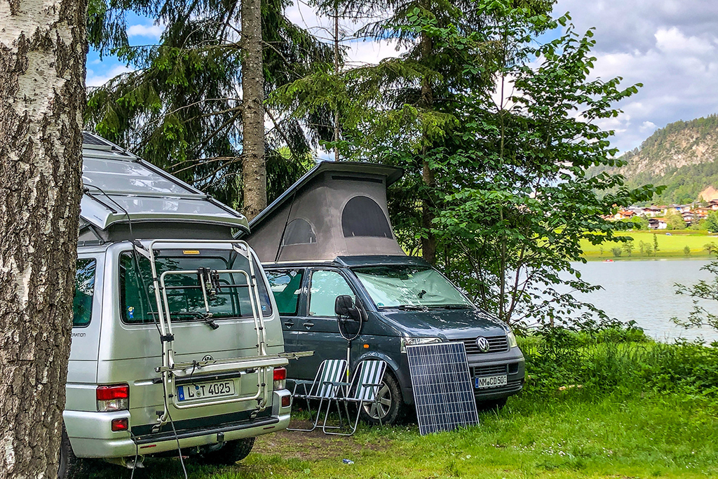 campers zwarte woud
