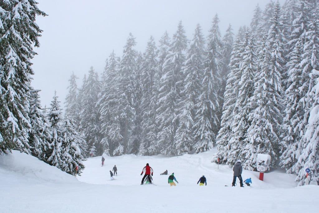 Intermediate skiers Silvretta Montafon