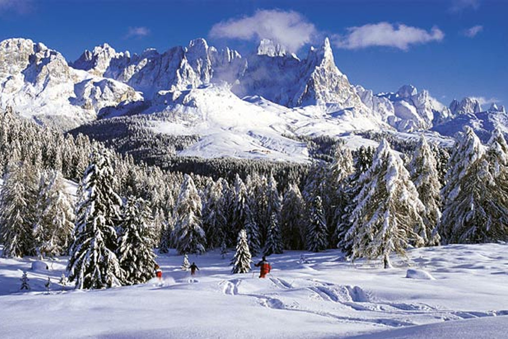 gladed skiing rolle pass dolomiti superski
