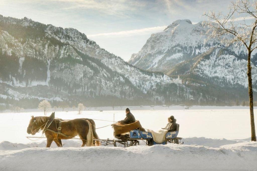Pferdeschlittenfahrt im Allgäu