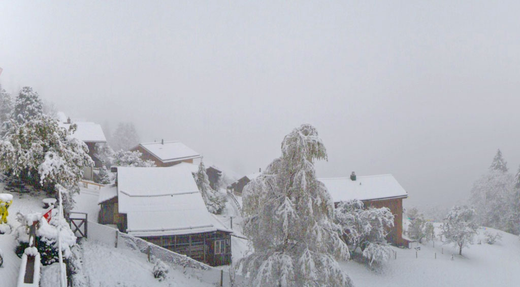 Webcam Wengen