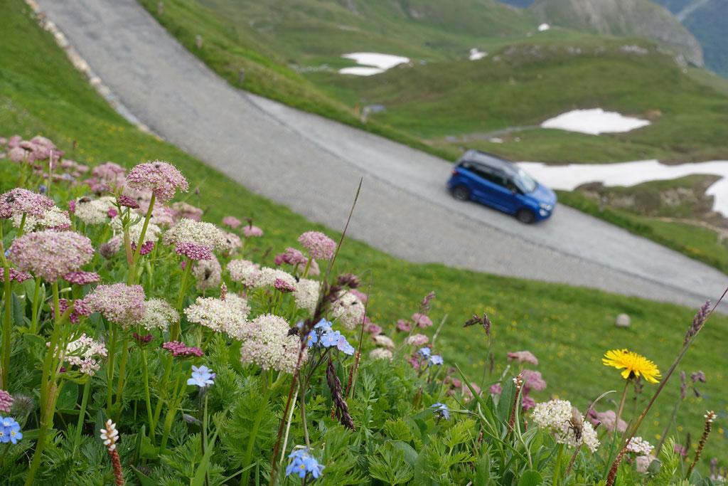 Met de auto in de bergen