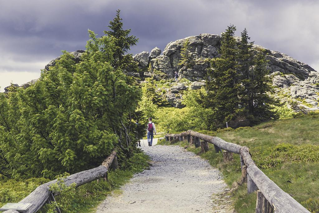 wandelen Nationaal Park Bayerischer Wald